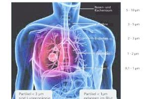 Bild 1: Gesundheitliche Aspekte des Feinstaubs