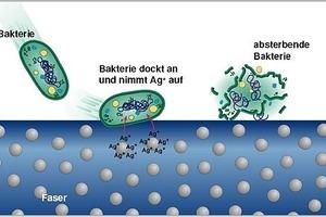 Wenn Bakterien in direkten Kontakt mit dem Textil kommen, werden sie durch die Silberionen geschädigt, so dass die Vermehrung verhindert wird<br />